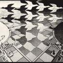 mostra Escher a Treviso