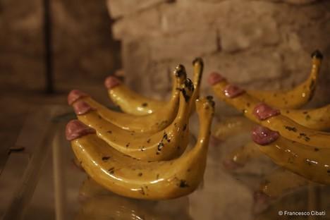 Parma follows the Banana