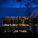 Il giardino segreto di Xinù Perfumes creato da Cadena + Esrawe