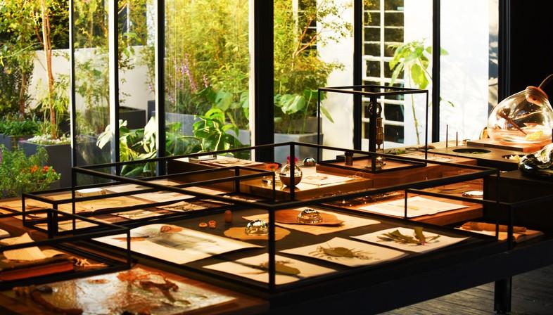 Il giardino segreto di Xinù Perfumes creato da Cadena Esrawe ...