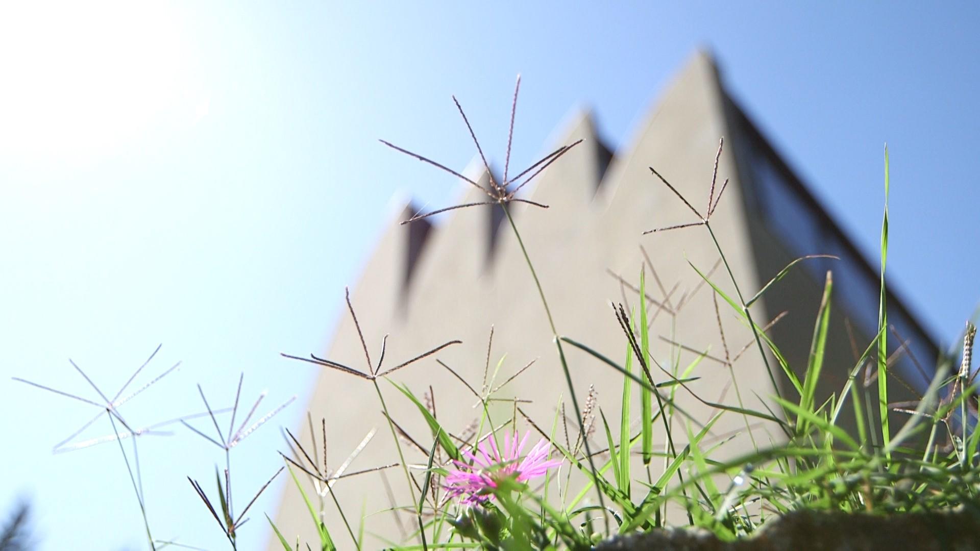 Crowdfunding per film-documentario sulla chiesa di Alvar Aalto a Riola
