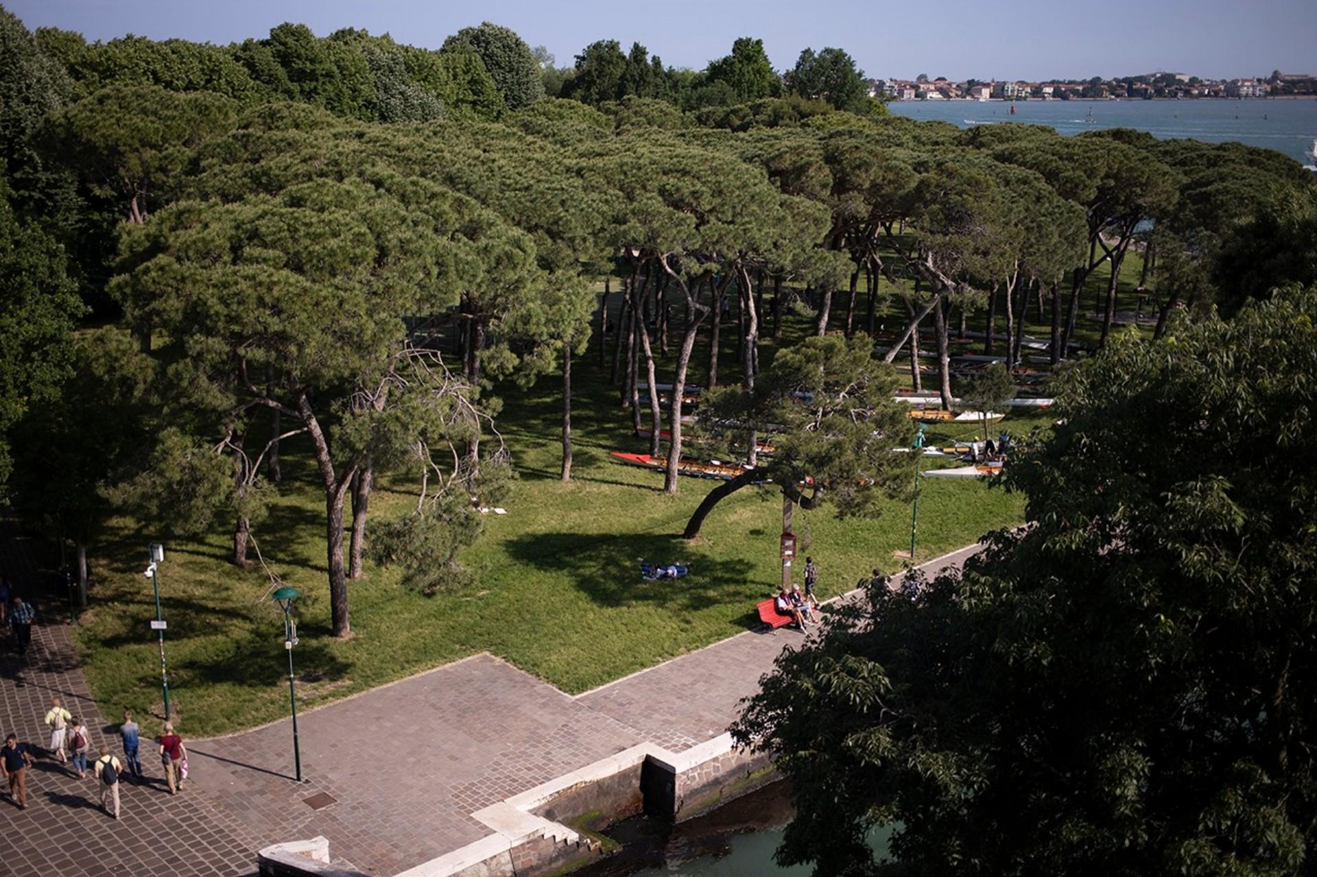 I vincitori della Biennale di Architettura di Venezia