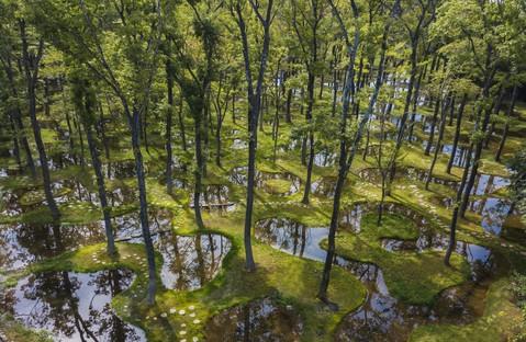 Il poetico giardino di Junya Ishigami vince prima edizione di Obel Award