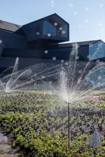 Piet Oudolf progetta il Perennial Garden del Vitra Campus di Weil am Rhein