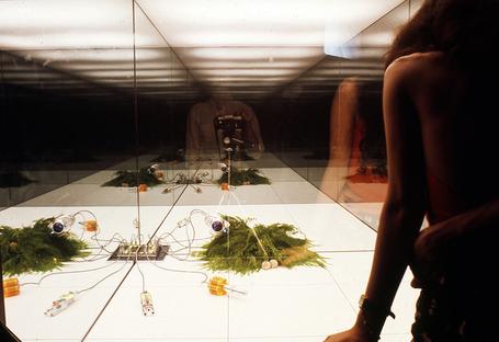 mostra Environments and Counter Environments.