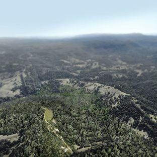 Lune de Sang shed di CHROFI nelle foreste dell'Australia