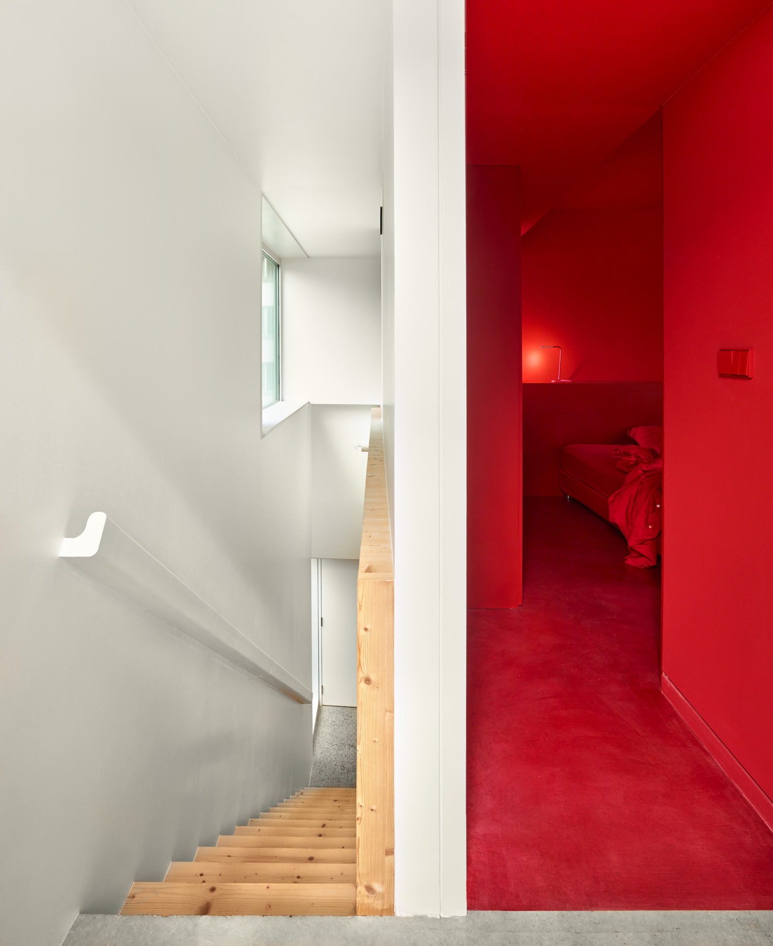 Dominique Coulon: edificio per uffici e residenza a Strasburgo