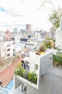 Akihisa Hirata: Tree-ness house, casa e galleria d'arte a Tokyo