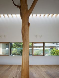 Ogawa: natura e architettura nella casa con alberi a Kagawa