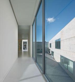Taller Bàsico de Arquitectura: Facoltà di medicina a Saragozza
