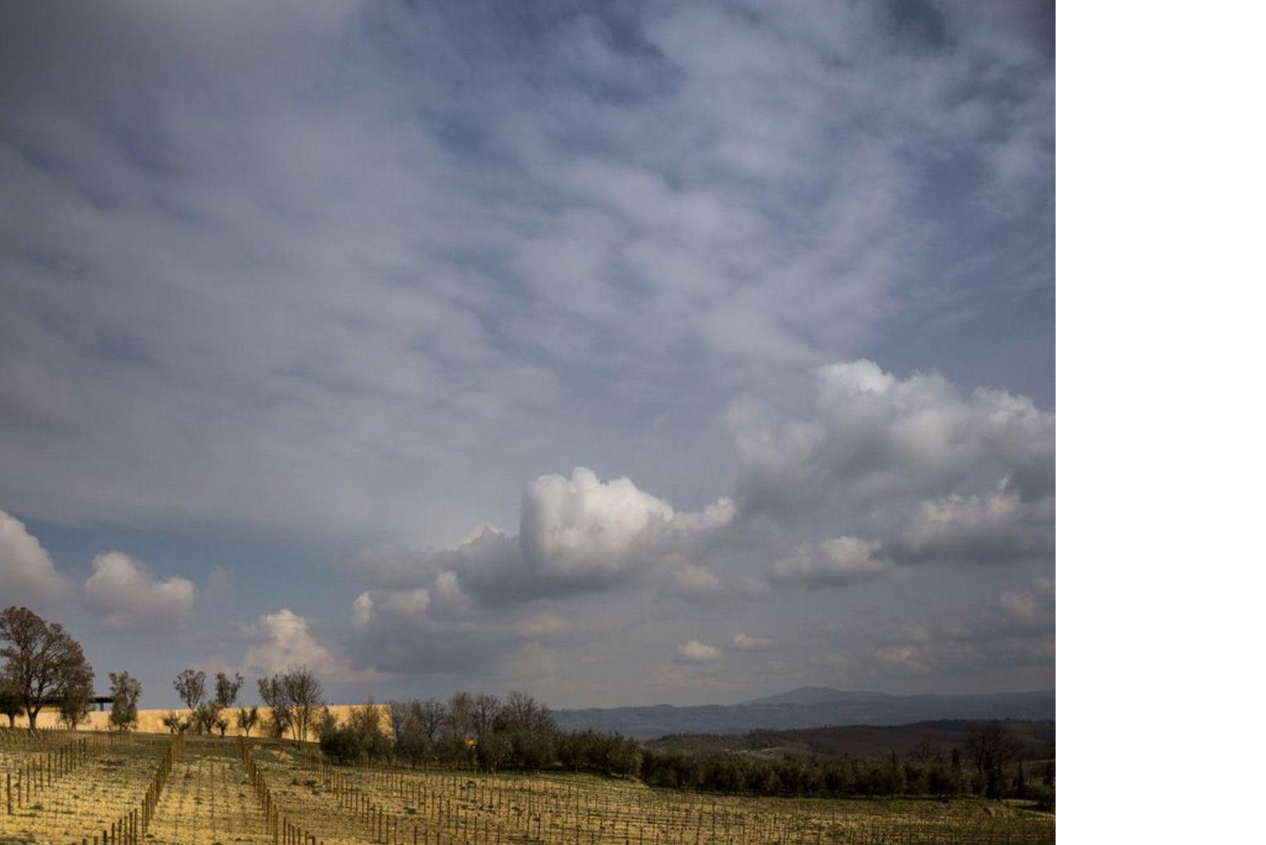 Le Cantine Bulgari di Alvisi Kirimoto a San Casciano dei Bagni (Siena)