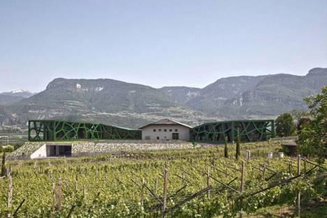Cantina Tramin, Alto Adige