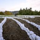 Installazione No Man's land di Yona Friedman