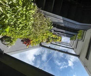 AIROS, condominio sostenibile di NAJAS ARQUITECTOS