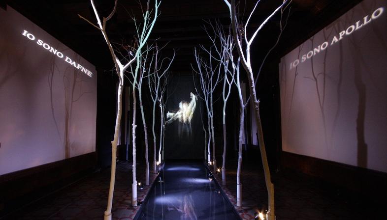 Antichi miti greci rivisti come installazione multimediale