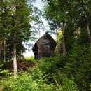 Una casetta nel bosco di YH2