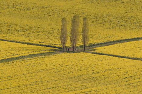 Paesaggi visti dall'alto, Stefano Maruzzo