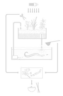 Aquaponic Eel Bar di Leopold Bianchini
