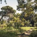 Palermo ospita la Manifesta 12, Il Giardino Planetario