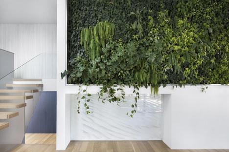 Un muro vivente nella casa recuperata da Naturehumaine
