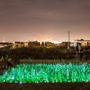 LuzInterruptus a Valencia per il recupero degli orti