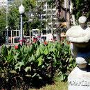 The Atlantic Triangle, 11a Bienal do Mercosul Porto Alegre