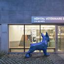 Una clinica veterinaria a Montreal di TBA/Thomas Balaban Architecte