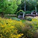 InSitu Garden, verde sostenibile nel Connecticut di Land Morphology