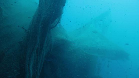 Second Nature combatte l'inquinamento marino con il design