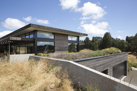 The Meadow Home di Feldman Architecture