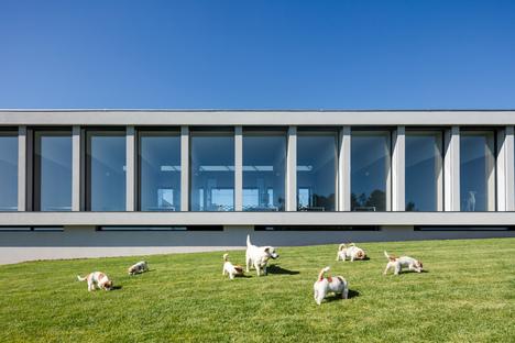 Canine & Feline Hotel, una pensione per cani e gatti di Raulino Silva