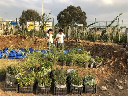 Beirut RiverLESS Urban Forest o come rigenerare una città
