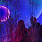 Magenta Moon, installazione interattiva di flora&faunavisions a Berlino