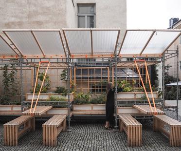 Kasvattamo, verdure a km0 secondo ROOH Studio
