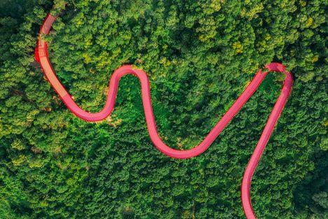 Un parco nella foresta a Guangming in Cina