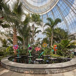 Mostra KUSAMA: Cosmic Nature al New York Botanical Garden