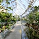 Global Flora Conservatory, una collezione botanica sostenibile