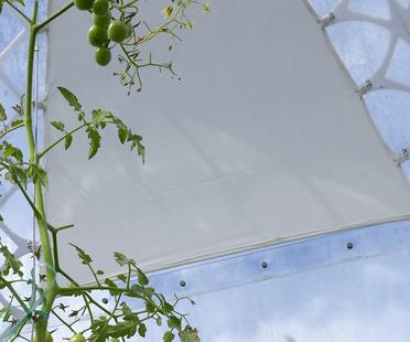 The Invisible Garden House. Serra bioclimatica di SHJWORKS.