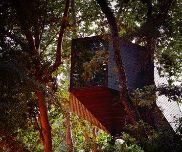 Architettura nel bosco: The Tree Snake Houses