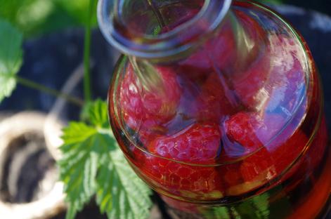 Un condimento dai boschi: l'Aceto di mele ai lamponi