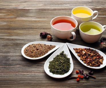 Viaggio nel tè: intervista al tea sommelier Felix Bürklein