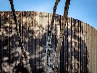 Facciata di legno per il nuovo cultural quarter del Wellington College di Seilern architects